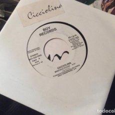 Disques de vinyle: CICCIOLINA BOY RECORDS MUSCOLO ROSO. Lote 203057890