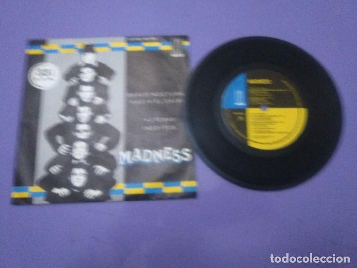 Discos de vinilo: JOYA SKA EP. MADNESS.BARCO NOCTURNO HACIA EL CAIRO/ENGAÑAR AL OJO + 2. SELLO STIFF MO 1941 - 1980 - Foto 12 - 204473075