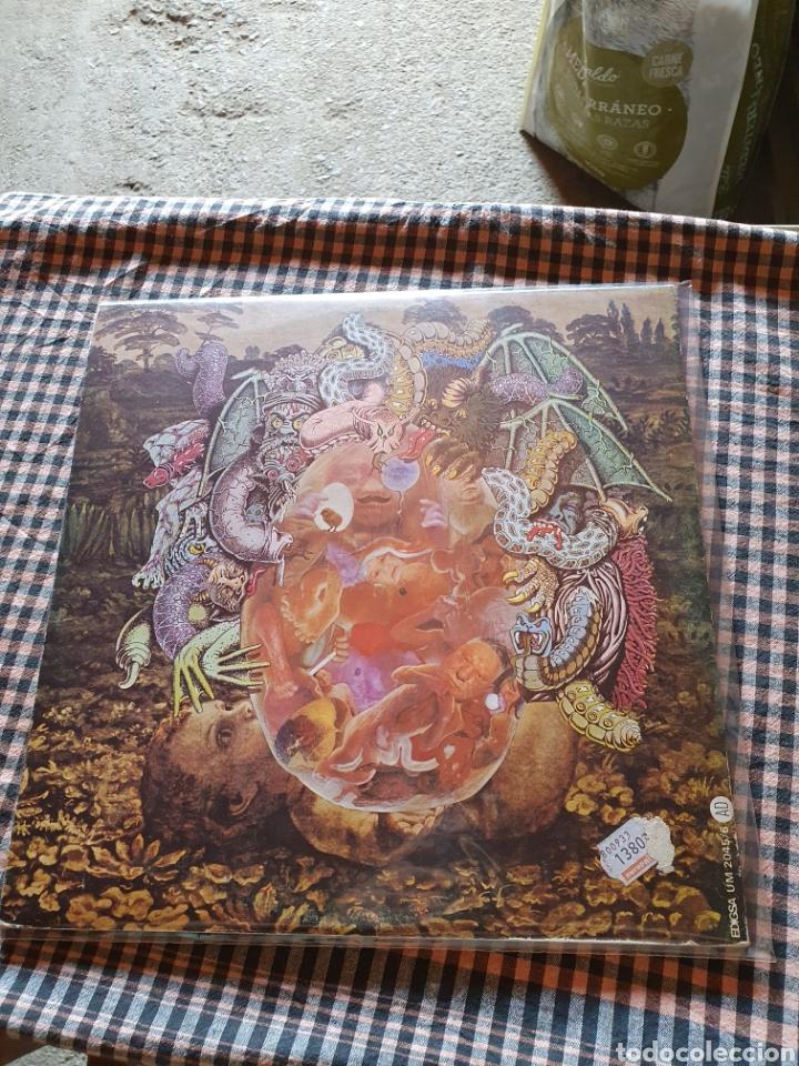 Discos de vinilo: Pau riba, acompanyat per om - dioptria, edigsa um 2045/6, 1978. Rock, folk, nova canço. - Foto 10 - 205772532