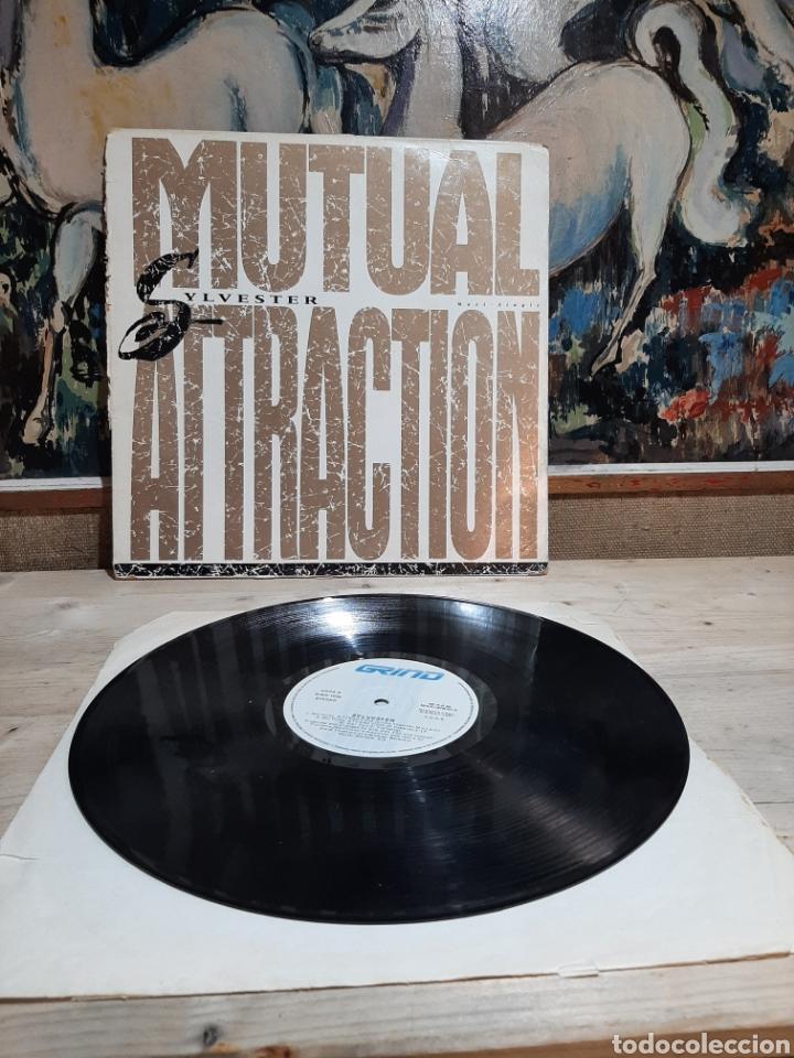 SYLBESTER MUTUAL ATTRACTOR (Música - Discos de Vinilo - Maxi Singles - Otros estilos)