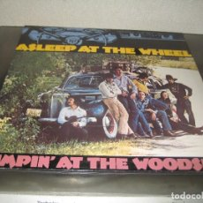 Discos de vinilo: ASLEEP AT THE WHEEL - JUMPIN AT THE WOODSIDE. Lote 206491133