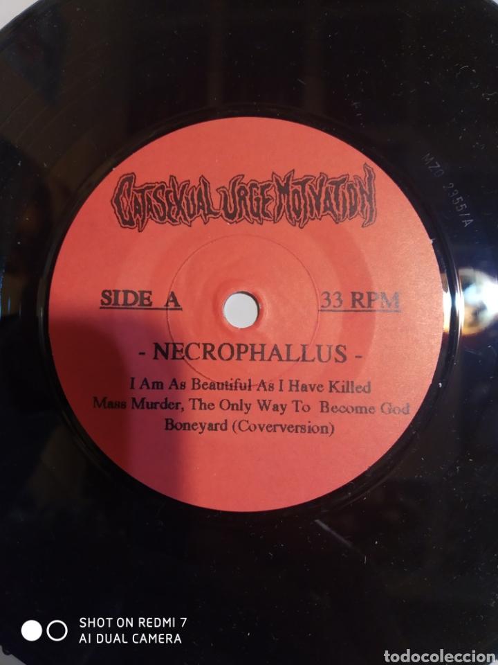 Discos de vinilo: Gatasexual urge motivation. Necrophallus 9 temas.. - Foto 2 - 206507241