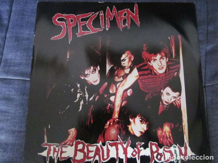 SPECIMEN - THE BEAUTY OF POISIN - MX - EDICION INGLESA DEL AÑO 1983 (Música - Discos de Vinilo - Maxi Singles - Pop - Rock - New Wave Internacional de los 80)
