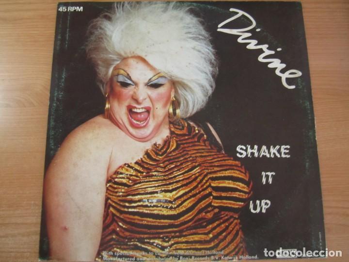 Discos de vinilo: disco vinilo divine shake it up - Foto 2 - 234656480