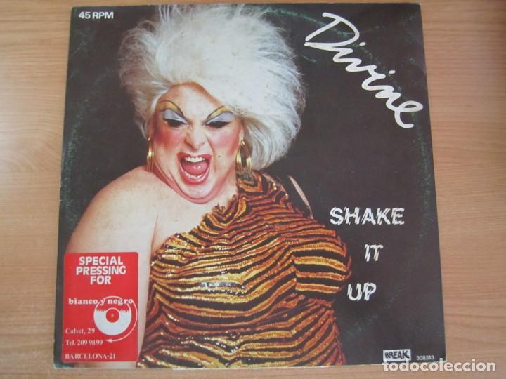 DISCO VINILO DIVINE SHAKE IT UP (Música - Discos de Vinilo - Maxi Singles - Disco y Dance)