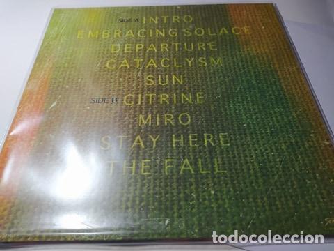 Discos de vinilo: LP - Sarah Longfield – Disparity - SOM507LPCV - ¡¡ Nuevo !! - Foto 2 - 210304990