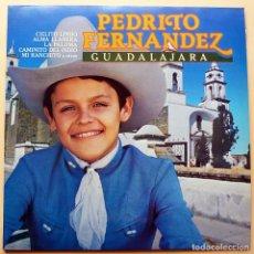 Discos de vinilo: PEDRITO FERNANDEZ: GUADALAJARA - LP - DISCOS CBS - 1981 - CASI NUEVO (NM). Lote 210402323