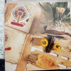 """Discos de vinilo: LOS VAN VAN - QUE PALO ES ESE (12"""") 1989.SELLO:MANGO CAT. Nº: 12 MNG 707. COMO NUEVO. Lote 211607975"""