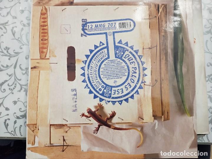 """Discos de vinilo: Los Van Van - Que Palo Es Ese (12"""") 1989.Sello:Mango Cat. nº: 12 MNG 707. COMO NUEVO - Foto 2 - 211607975"""