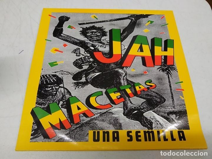 JAH MACETAS - UNA SEMILLA -MINI LP (Música - Discos de Vinilo - Maxi Singles - Reggae - Ska)