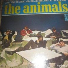 Discos de vinilo: THE ANIMALS - ANIMALIZATION - (USA-MGM-1966) OG USA GARAGE R&B EXCELENTE CONDICION LEA DESCRIPCION. Lote 213948440