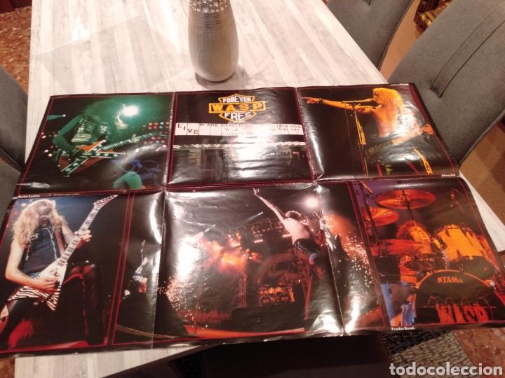 """Discos de vinilo: Wasp """" Forever Free """"Maxi Single 12"""" Edición Limitada U.K. Con Poster desplegable y Vinilo Firmado . - Foto 3 - 217485682"""
