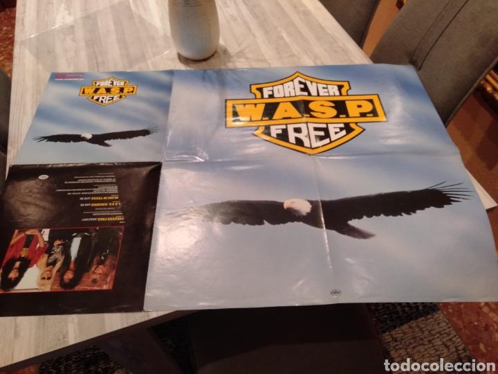 """Discos de vinilo: Wasp """" Forever Free """"Maxi Single 12"""" Edición Limitada U.K. Con Poster desplegable y Vinilo Firmado . - Foto 4 - 217485682"""