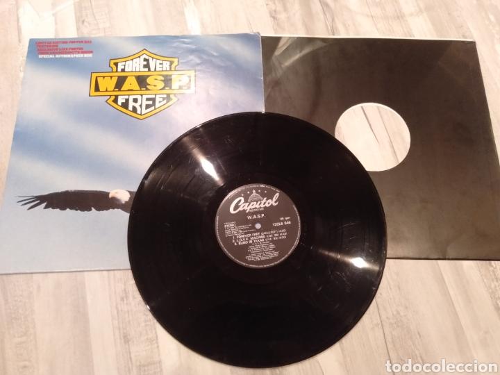 """Discos de vinilo: Wasp """" Forever Free """"Maxi Single 12"""" Edición Limitada U.K. Con Poster desplegable y Vinilo Firmado . - Foto 5 - 217485682"""