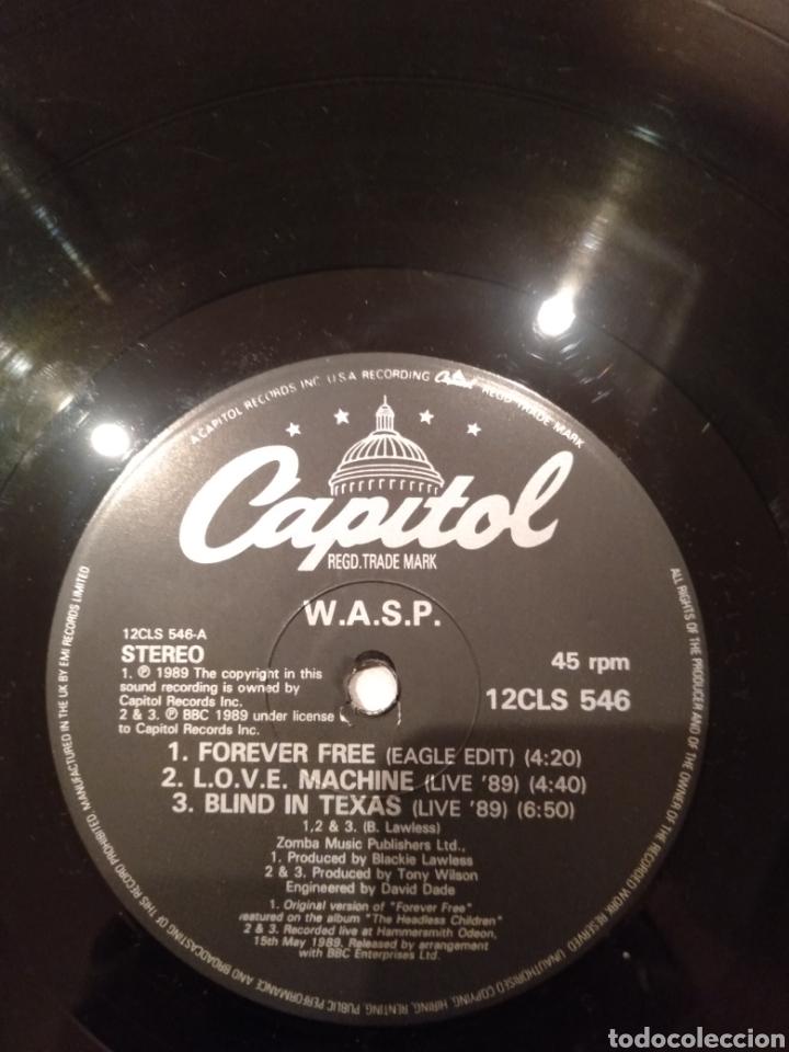 """Discos de vinilo: Wasp """" Forever Free """"Maxi Single 12"""" Edición Limitada U.K. Con Poster desplegable y Vinilo Firmado . - Foto 9 - 217485682"""