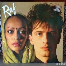 Disques de vinyle: RAF - 1984 LP. Lote 217628653