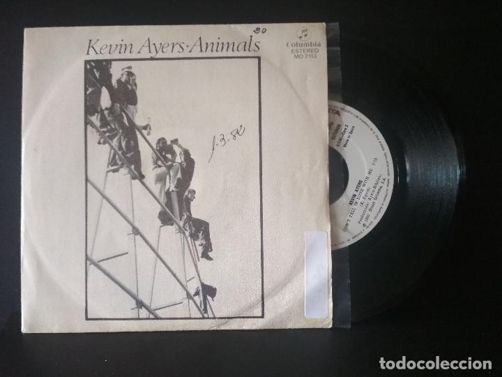 KEVIN AYERS ANIMALS + 1 SINGLE SPAIN 1982 PDELUXE (Música - Discos de Vinilo - Singles - Pop - Rock Extranjero de los 80)
