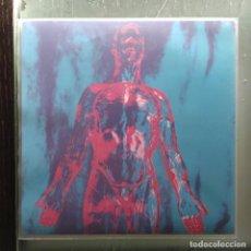 """Discos de vinilo: NIRVANA - SLIVER (7"""", SINGLE) (SUB POP) SP 73 (2010,US) (D:NM). Lote 219736656"""