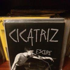 Discos de vinil: CICATRIZ / ESCUPE / MUNSTER RECORDS 2011. Lote 219969705