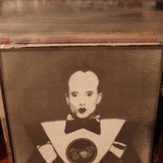 Discos de vinilo: ARSEDESTROYER / GORE BEYOND NECROPSY / IDEM / DEVOUR 2000. Lote 221565152