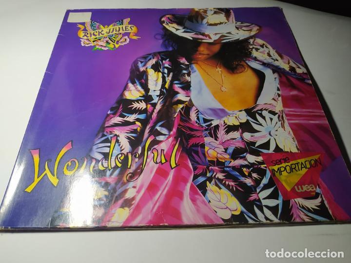 LP - RICK JAMES ?– WONDERFUL - 925 659-1 - CARPETA ( VG / VG) EURO 1988 (Música - Discos de Vinilo - Maxi Singles - Disco y Dance)