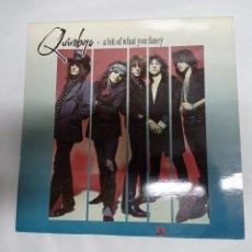Discos de vinilo: QUIREBOYS A BIT OF WHAT YOU FANCY 1990. Lote 222285872