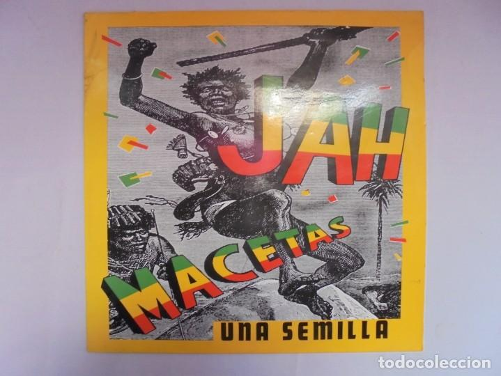 Discos de vinilo: JAH MACETAS. UNA SEMILLA. LP VINILO. EUROPA COMPACT. 1988. VER FOTOGRAFIAS ADJUNTAS - Foto 2 - 222550205