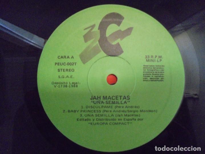 Discos de vinilo: JAH MACETAS. UNA SEMILLA. LP VINILO. EUROPA COMPACT. 1988. VER FOTOGRAFIAS ADJUNTAS - Foto 4 - 222550205