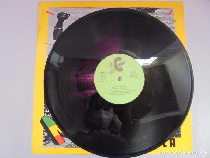 Discos de vinilo: JAH MACETAS. UNA SEMILLA. LP VINILO. EUROPA COMPACT. 1988. VER FOTOGRAFIAS ADJUNTAS - Foto 5 - 222550205