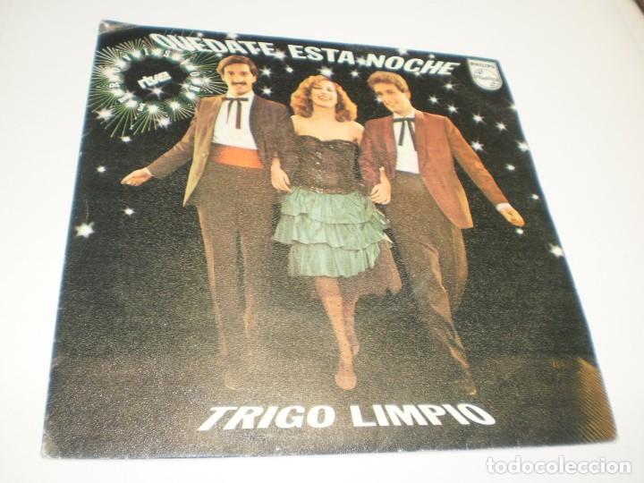 SINGLE TRIGO LIMPIO QUÉDATE ESTA NOCHE. DE PROFESIÓN BRIBÓN. PHILIPS 1980 (PROBADO, BIEN, SEMINUEVO) (Música - Discos - Singles Vinilo - Grupos Españoles de los 70 y 80)