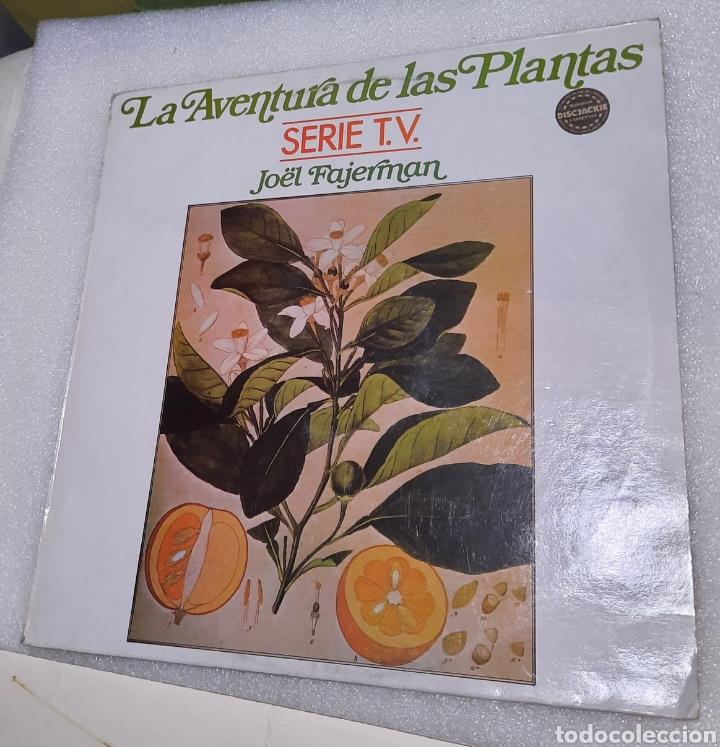 JOËL FAJERMAN - LA AVENTURA DE LAS PLANTAS (Música - Discos - LP Vinilo - Electrónica, Avantgarde y Experimental)