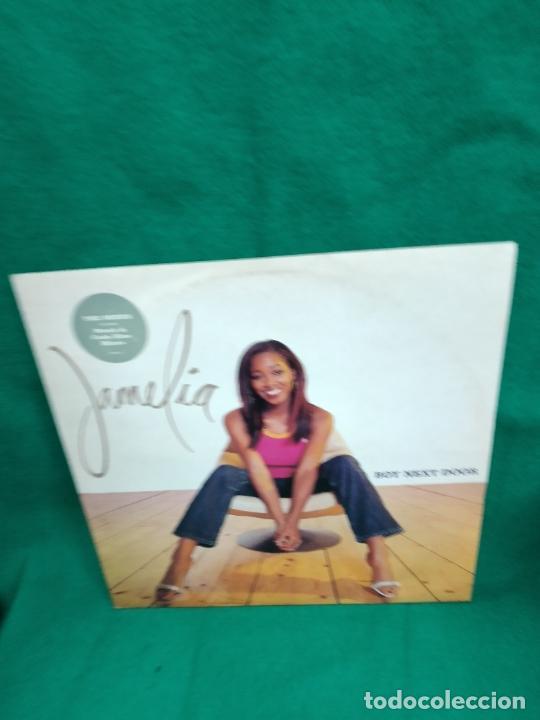JAMELIA. BOY NEXT DOOR THE MIXES INCLUDES STUSH & CODE BLUE MIXES. (Música - Discos - LP Vinilo - Rap / Hip Hop)