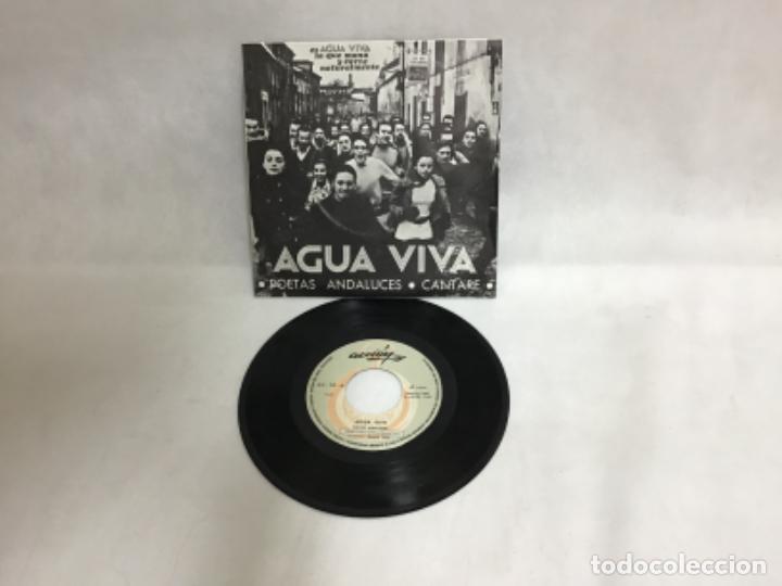 AGUA VIVA, DISCO AÑO 1969 (Música - Discos de Vinilo - EPs - Grupos Españoles 50 y 60)