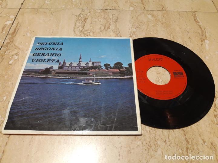 MESIE BATO- PETUNIA/BEGONIA/GERANIO/VIOLETA EP 1975 AUDIO PROMO FUNK GROOVE WAH PSYCH SOUL (Música - Discos de Vinilo - EPs - Grupos Españoles de los 70 y 80)