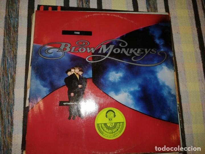 LOTE 2 DISCOS POP ROCK. BLOW MONKEYS,THE SPRINGTIME FOR THE WORLD Y TRANSVISION VAMP, (I JUST WANNA) (Música - Discos de Vinilo - Maxi Singles - Pop - Rock Internacional de los 70)