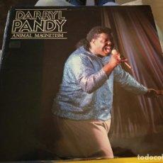 """Discos de vinilo: DARRYL PANDY - ANIMAL MAGNETISM (12"""") SELLO:NIGHTMARE RECORDS,MARE 2.MUY BUEN ESTADO.NEAR MINT/NM. Lote 236847545"""