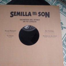 Discos de vinilo: MAXISINGLE (VINILO) DE VARIOS SEMILLA DEL SON AÑOS 90. Lote 240575755