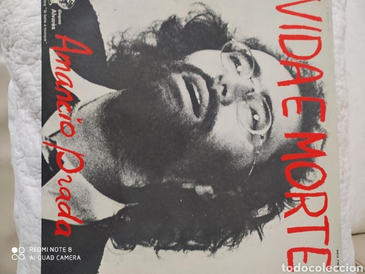 VIDA E MORTE AMANCIO PRADA VINILO (Música - Discos - LP Vinilo - Cantautores Españoles)
