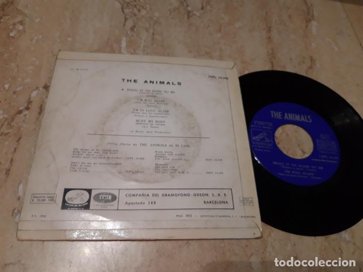 Discos de vinilo: THE ANIMALS - BRING IT ON HOME TO ME. EP 1965 EDICIÓN ESPAÑOLA- - Foto 2 - 243614890