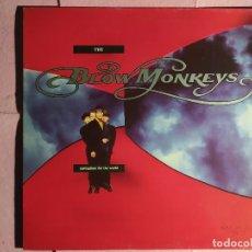"""Discos de vinilo: 12"""" THE BLOW MONKEYS – SPRINGTIME FOR THE WORLD - RCA PT-43624 (3A ) SPAIN PRESS - MAXI (EX+/EX+). Lote 243849560"""