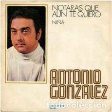 Discos de vinilo: ANTONIO GONZALEZ– NOTARAS QUE AUN TE QUIERO. Lote 245404560