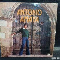 Discos de vinilo: ANTONIO AMAYA. VINILOS. Lote 246858060