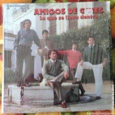 Discos de vinilo: LIQUIDACION LP EN PERFECTO ESTADO_AMIGOS DE GINES_LO QUE SE LLEVA DENTRO. Lote 247013900