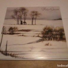 Discos de vinilo: PETER GREEN LP WHITE SKY ESP.1983. Lote 255490470
