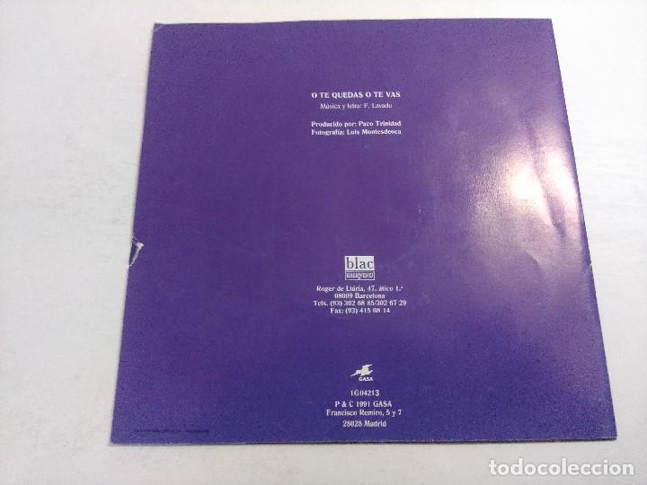 Discos de vinilo: SINGLE/GATOS LOCOS/O TE QUEDAS O TE VAS. - Foto 3 - 268718174