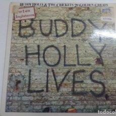 Discos de vinilo: VINILO/BUDDY HOLLY & THE CRICKETS/20 GOLDEN GREATS.. Lote 270001718