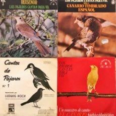 Discos de vinilo: LOTE 4 SINGLES CANTO DE PAJAROS. Lote 271400458