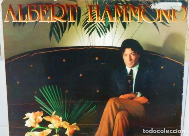 ALBERT HAMMOND * LP * COMPRENDERTE * 1981 PROMOCIONAL * RARE WHITE LABEL (Música - Discos - LP Vinilo - Solistas Españoles de los 70 a la actualidad)