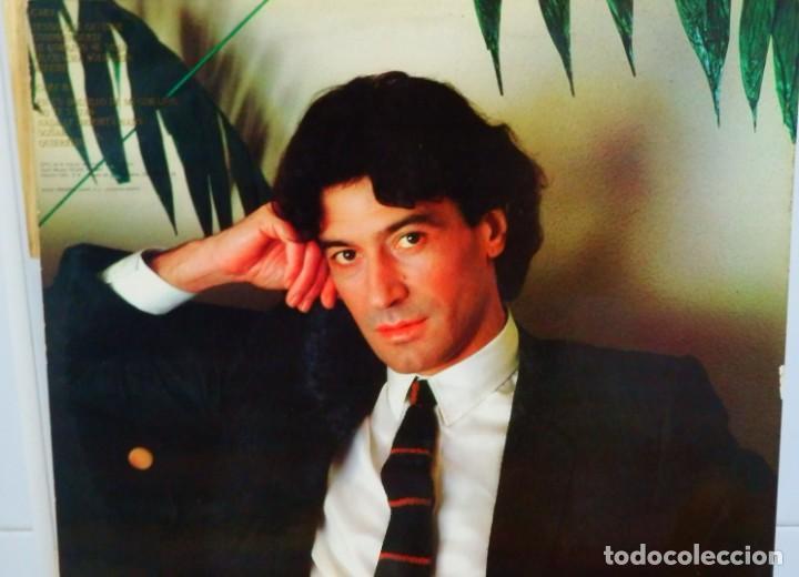 Discos de vinilo: Albert Hammond * LP * Comprenderte * 1981 Promocional * Rare White label - Foto 2 - 274412328