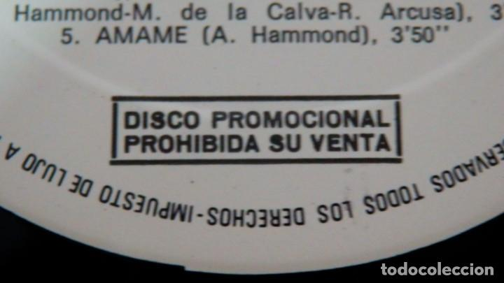 Discos de vinilo: Albert Hammond * LP * Comprenderte * 1981 Promocional * Rare White label - Foto 7 - 274412328